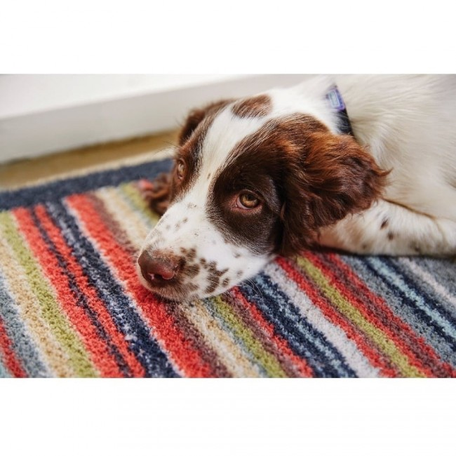 Dog Friendly Runner Rug